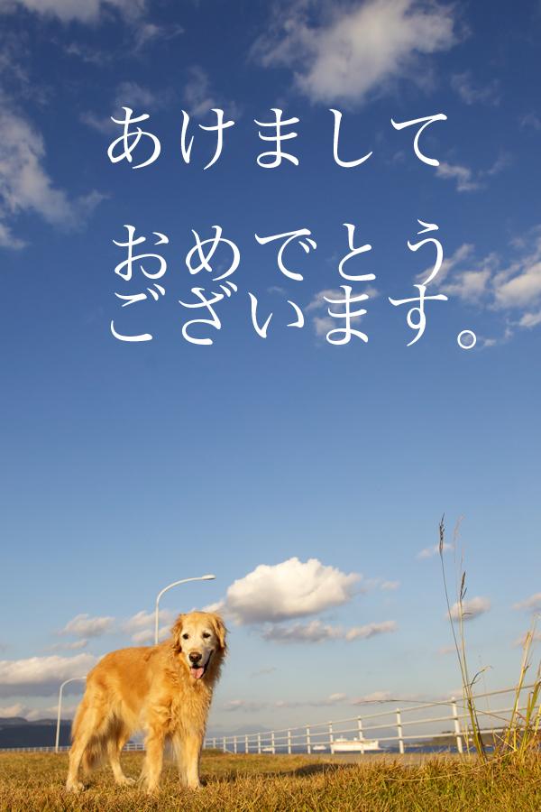 2011年賀状01-1