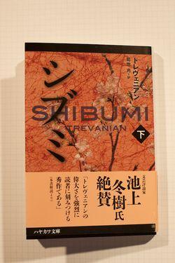 Shibumi02